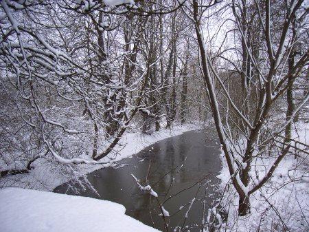 river-ash-in-widford3